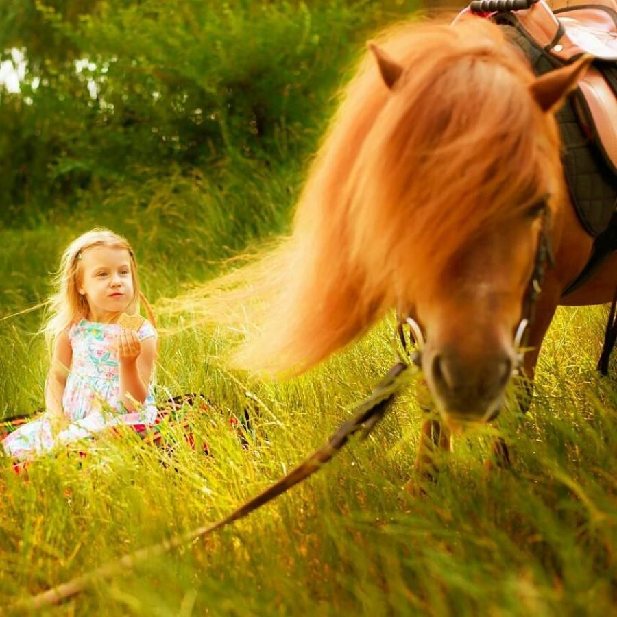 """Фотосессия для детей и их родителей """"Пони"""""""