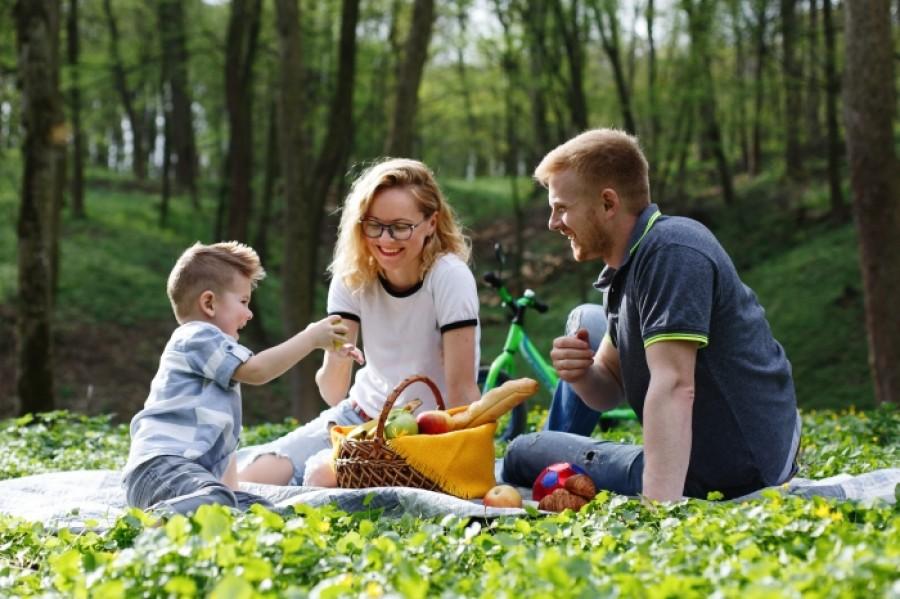 Как защитить себя и свою семью от клещей