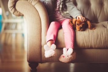 Хвостатые злодеи, или чем могут быть опасны домашние животные