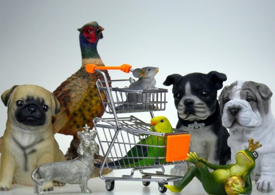 Топ-10 животных, которые станут лучшим другом вашему ребёнку