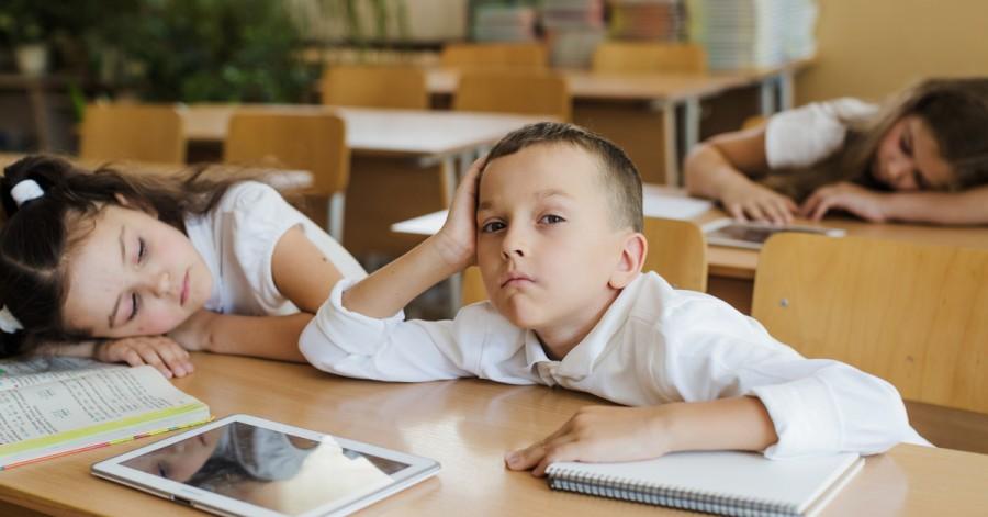 Ребенок отказывается ходить в школу: как реагировать и чем помочь