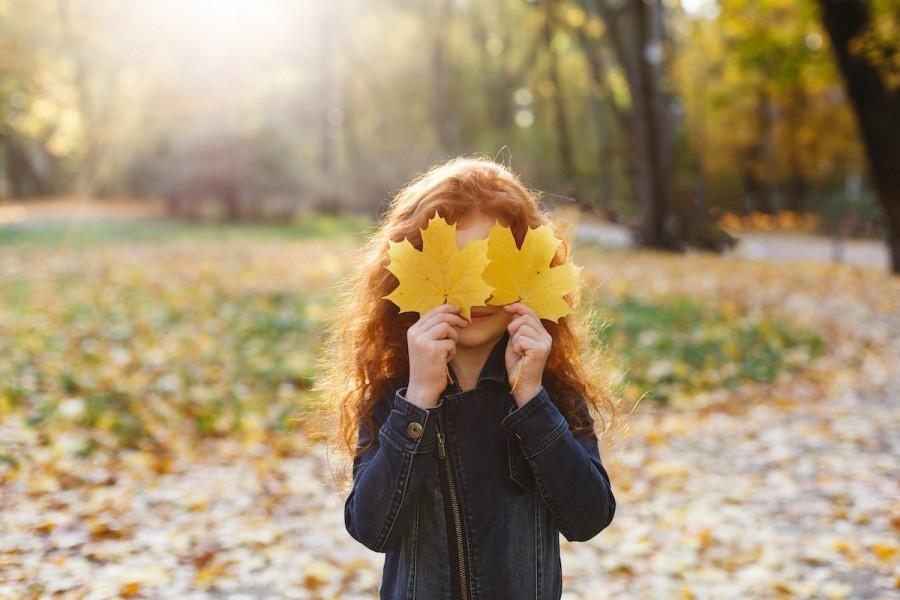 Осенние поделки: подборка креативных идей для детского творчества