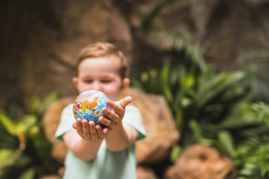 Мультики про экологию: как увлекательно прививать ребенку экологическое поведение