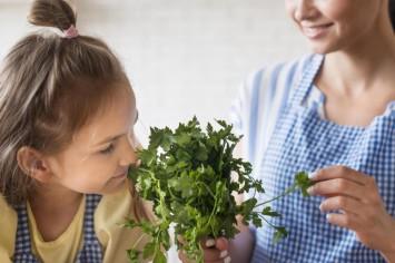 Зелень в рационе ребенка: когда и какую можно давать