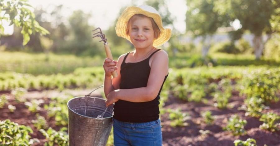 Лето на даче: почему ребенку полезно проводить время в деревне