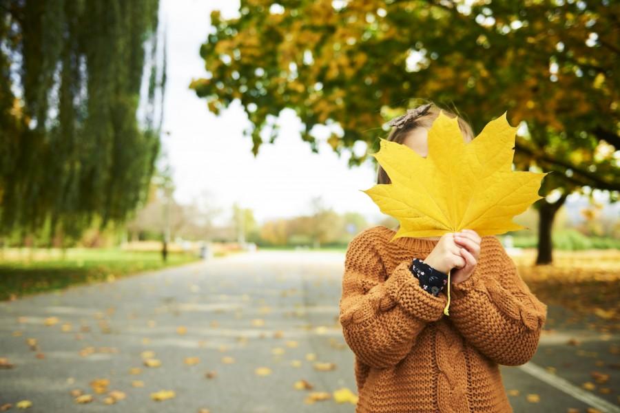 Игры с осенними листьями: подборка забав для развития ребенка