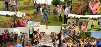 Лето в Карпатах для детей!