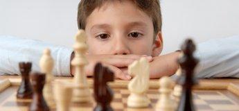 Занятия шахматами в семейном клубе Shalom Baby