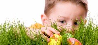 Пасхальная вечеринка для малышей Egg Hunt
