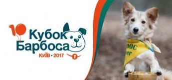 Кубок Барбоса 2017. Юбилейная выставка беспородных собак