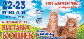 Международная выставка кошек