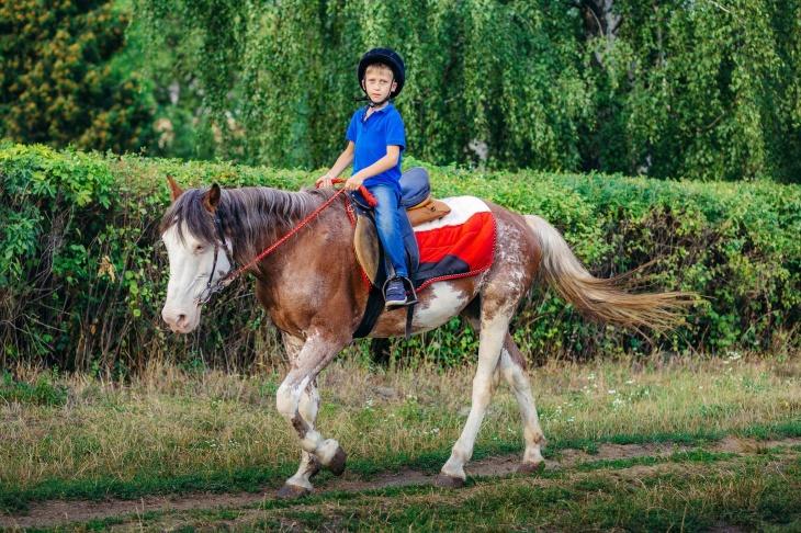 Уроки з верхової їзди для дітей