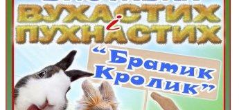 «Братик Кролик» - виставка вухастих і пухнастих