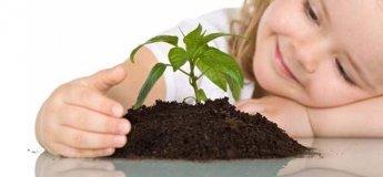 Семинар «Ресурсы и возможности в развитии нас и наших детей»