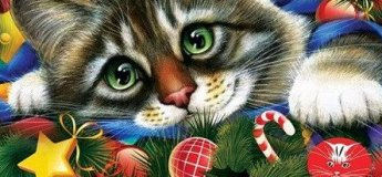 """Международная выставка кошек """"Cat-маскарад 2017"""""""