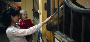 В гости к веселым пони и добрым лошадям. Экскурсия в пони-клуб