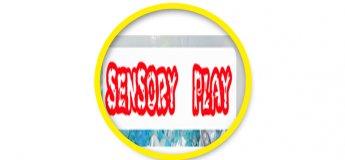 Развивающие занятия SENSORY PLAY  2-3,5