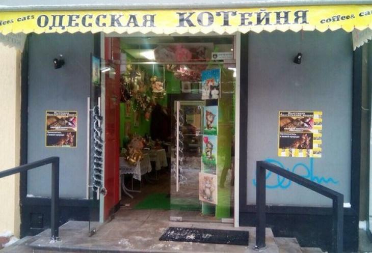 Картинки по запросу котейня Одесса
